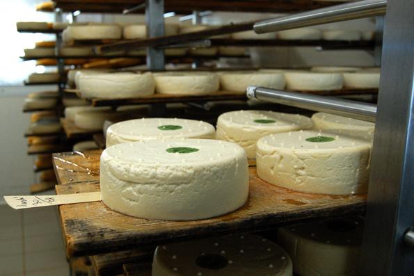 Reblochon-oste er klar til modning