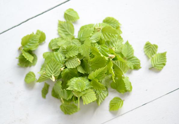 Birkeblade til ost
