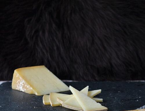Pecorino sardo – et medlem af pecorino-familien