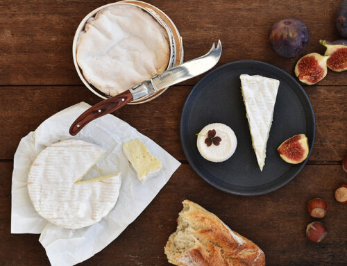 Nyhed: Online osteskole