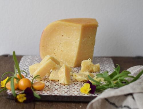 Verdens bedste ost er norsk